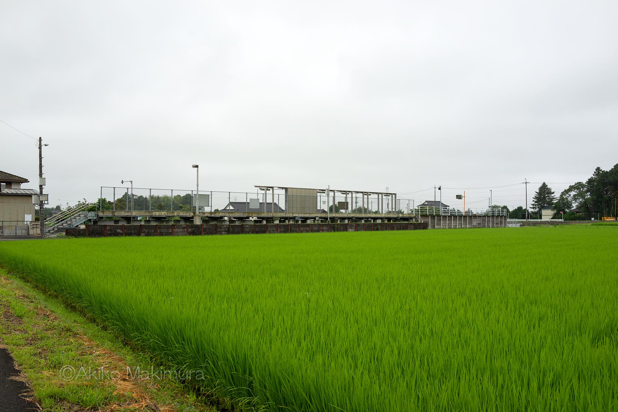 田園風景からのぞむ烏山線の下野花岡駅